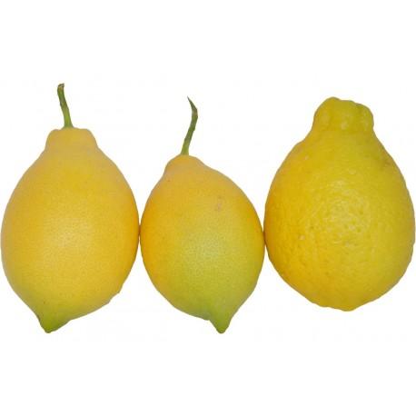Citron de Provence